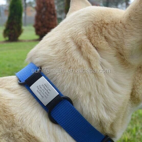 personalized stainless steel silicone id tag dog pet collar with tag