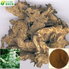 manufacturer supply 100% natrue Black cohosh extract triterpenes saponins 2.5% 5% 8%