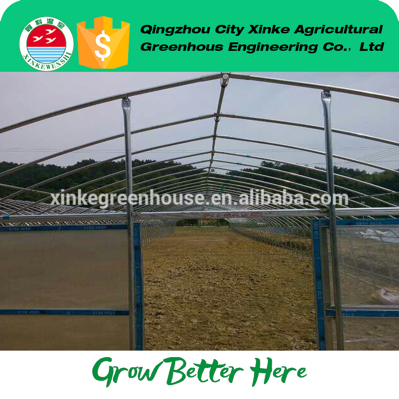 2017 hot style plastic single-span green house winter With Long-term Technical Support