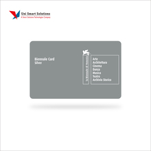 Best Selling Offset Printed Custom Silver PVC Card, PVC Card Silver