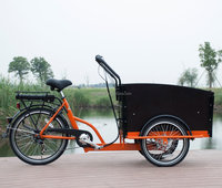 5012 hot sale adult three wheel electric Cargo Bike/Electric tricycle fashion model 6 speeds UB9031E-6S