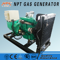 CE ISO approved 5-500kW portable biomass gas electric generator