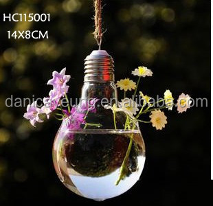 hanging air plant glass bubble vase