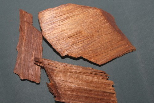 Pterocarpus Marsupium Wood - Vijaysar Wood Powder