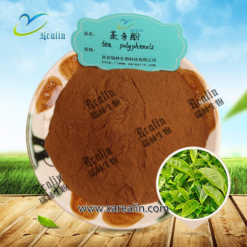 Green Tea Extract Tea Polyphenols for Weight Loss