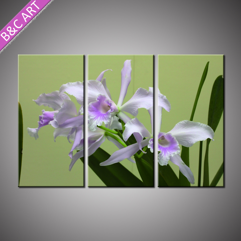 Modern Wall Art White Orchid Drawing 3 Panels Printed Orchid Painting with Stretcher Bar