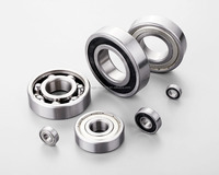 BALL BEARINGS 6302