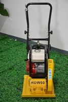 RDW60 Roadpower Wholesale Steel Walk Behind Soil Compaction Plate Compactor