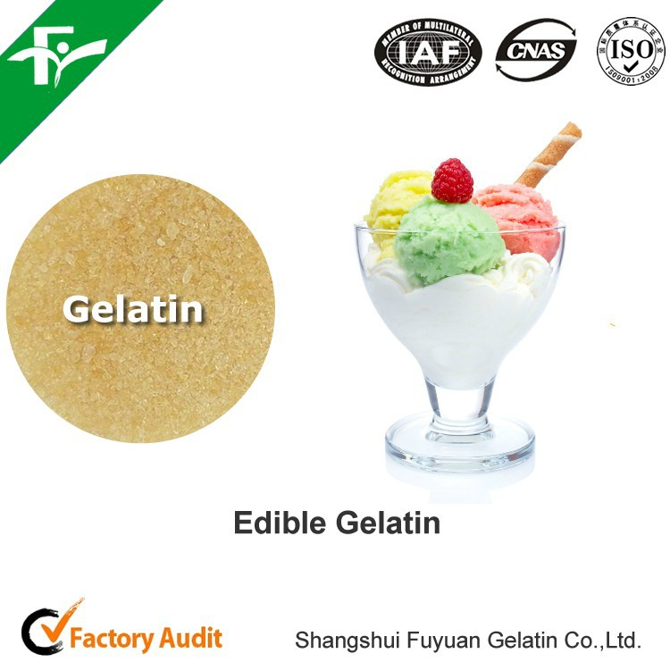 China factory supply edible gelatin / food grade gelatin for sour cream
