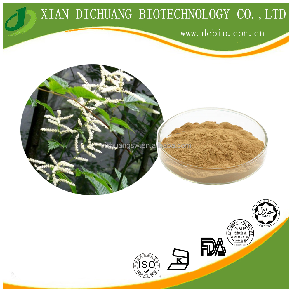 Organic Black Cohosh Root extract powder/Cimicifuga Romose L. Extract/ Cimicifuga racemosa Extract