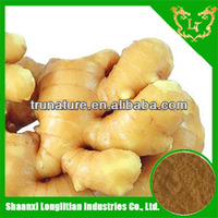 We GMP&ISO factory serve high quality and wholesale price extraction of ginger oleoresin/extraction of ginger oleoresin powder