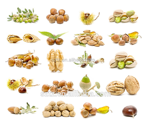 flavor agent nut flavor for dairy/beverages/ bakery /candy/ ice-cream f/pG +VG dissolve oil artificial hazelnut flavor fragrance