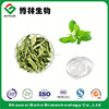 Top Quality China Stevia Extract for Drink Additives
