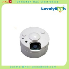 High Quality Electronic Mini Voice Recording Box for Toys Supplier