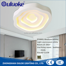 Hot Selling Factory Price Ceiling Light Cover Kitchen Ceiling Light Fixture