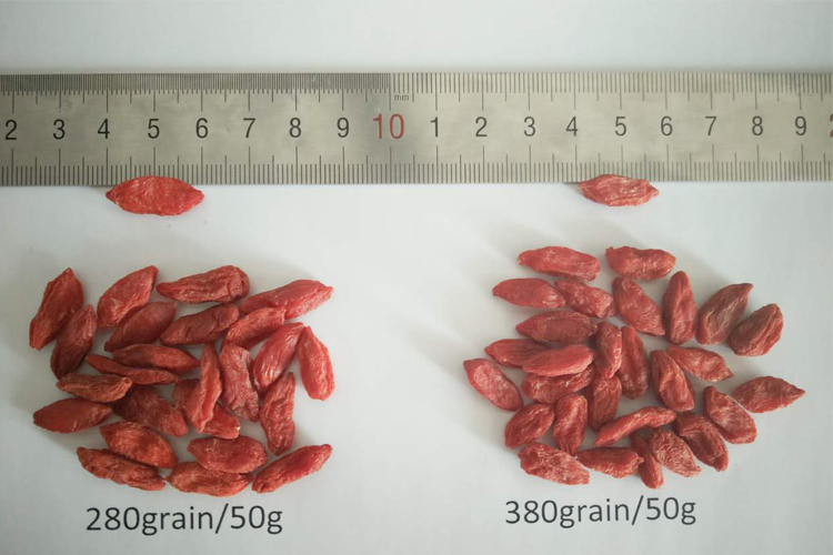 2016 the dry goji crop 750 grains certified organic goji berry dried certified ningxia goji berry supplier