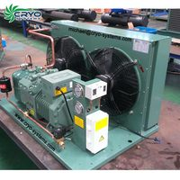 Refrigeration compressor freezing condensing unit for freezer commercial food