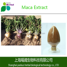Sex product for men natural 50% 60% 80% 98% maca extract cure premature ejaculation maca capsules high quality maca powder