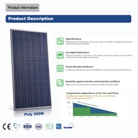 China top 300w TUV,CE,CQC,CEC,ISO,INMETRO solar panel