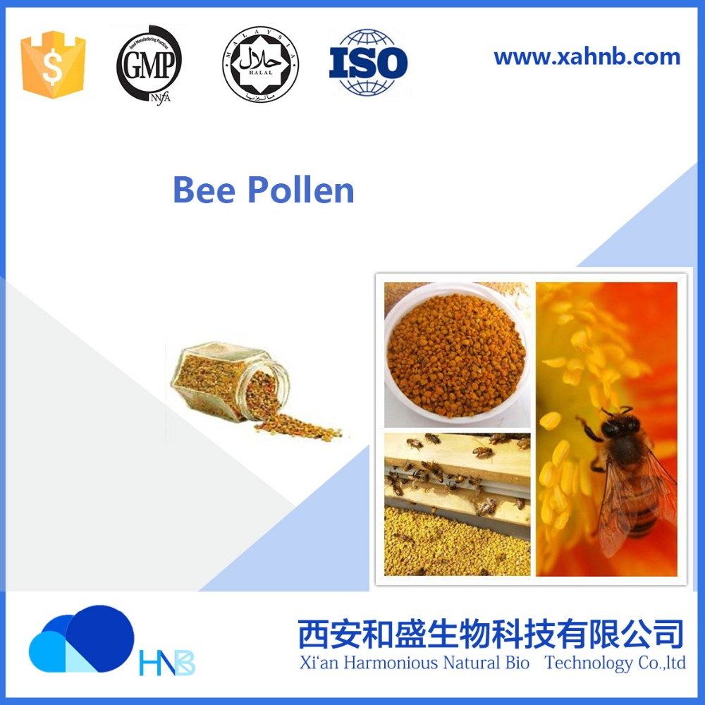 HNB Supply bee Pollen Pure And Hight Quality And Natural Honey
