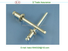 Coustomed OEM service aluminum blind rivet in Dongguan