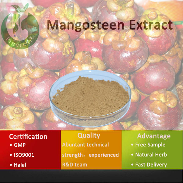 Mangosteen Extract,Mangosteen Rind Extract Powder,Mangosteen Extract Powder