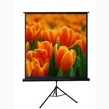 "Daylight outdoor cinema 70""x70"" 1:1 portable tripod projector screen with round tripod"