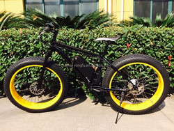 2015 hot sales newest design fat tire snow electric bike