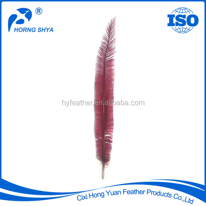 Manufacturer Factory Directly Cheap Top Quality Customized HP-<strong>17</strong> Red Ostrich Nandu