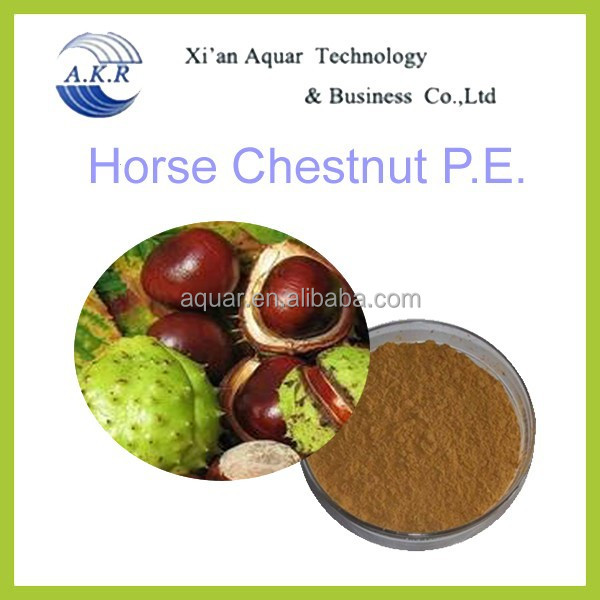 100% pure plant extract Horse Chestnut seed P.E.