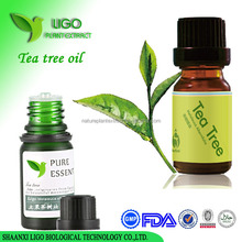 Fresh pure tea tree essential oil body wash bulk wholesale with private label