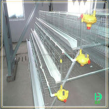 Chicken shed different types of poultry house design layer chicken cage for chicken coop
