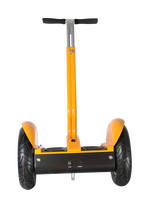 Factory direct sale 2 wheel self balancing electric personal transport vehicle