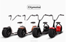 Pleasedin 2016 Big wheel New Inovation city electric scooter ; smart electric scooter
