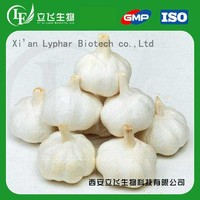 Lyphar Supply Garlic Powder