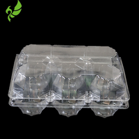 Disposable Material and Tray Type 6 Cavity Plastic Egg Tray