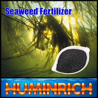 Huminrich 100% Water Soluble High Organic Matter Brown Seaweed Liquid Extract