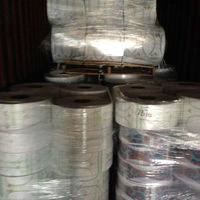 LDPE Cast Film Rolls And Bales
