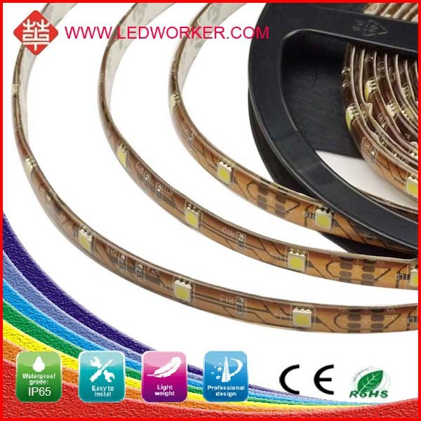 Hgih Brightness 5050 Magic Rgb 5050 Smd Led Strip Light 30 SMD/M IP65 From Ledworker