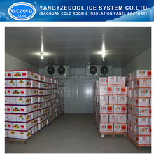 vaccine cold room ( medicine cold room ),pu panel cold room