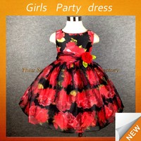 Kids clothing wholesale fancy formal children girl black red flower dress of 3-12 years old western gowns party dresses Lyd-870