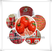 Cheap Canned Food Canned Tomato Paste from China
