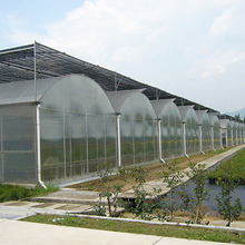 commercial poly tunnel greenhouse for sale