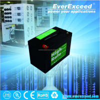 EverExceed HR range rechargeable lead acid battery
