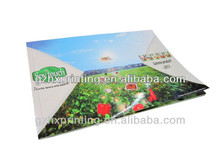 Green Vegetables Uncontaminated Food Growing Flyer Advertisement Paper Flyer Printing