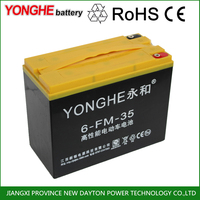 deep cycle 12V 38AH 6-dzm-38 rechargeable sealed lead acid gel battery for e rickshaw