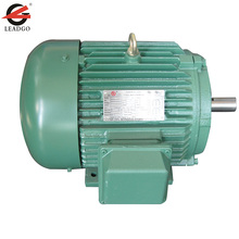 NEMA Squirrel Cage Three Phase Induction Motor