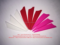 Colorful Plastic fletches/feathers for shooting/hunting arrows and bows