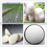 poultry feed garlic allicin powder with best price