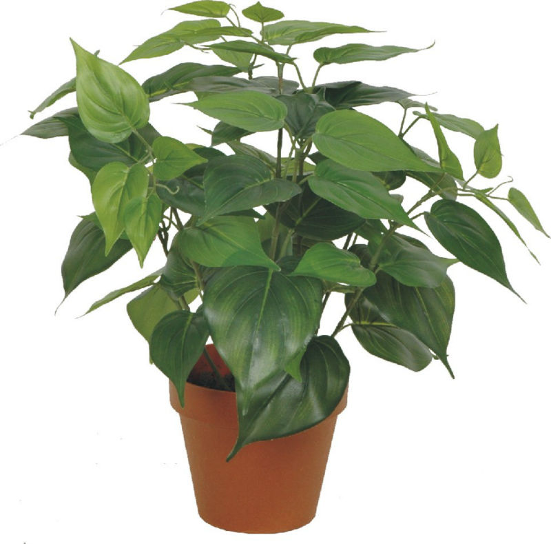 evergreen/fake/high imitation artificial potted tree